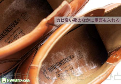 カビ臭い革靴からカビを除去し ...